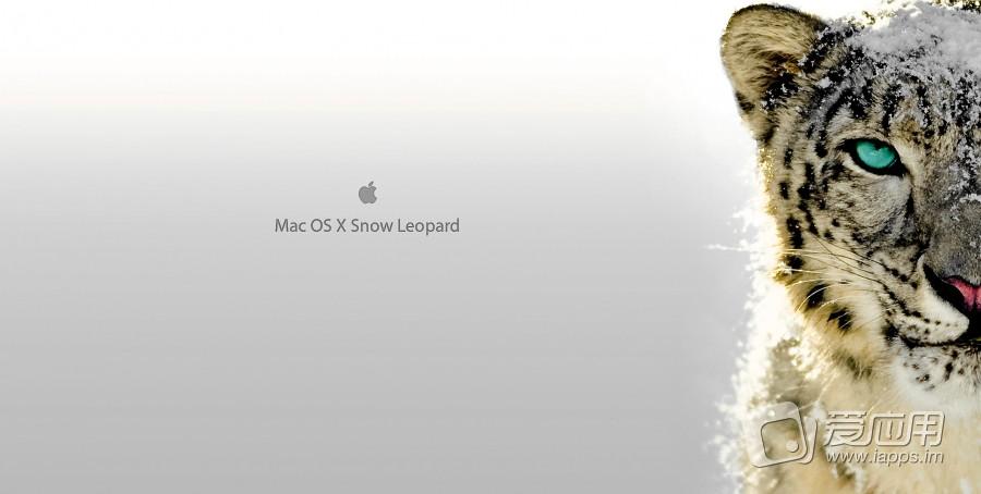 再见雪豹 - 苹果正式停止更新 Snow Leopard 系
